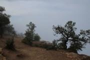Nebel verdeckte alsbald die Sicht