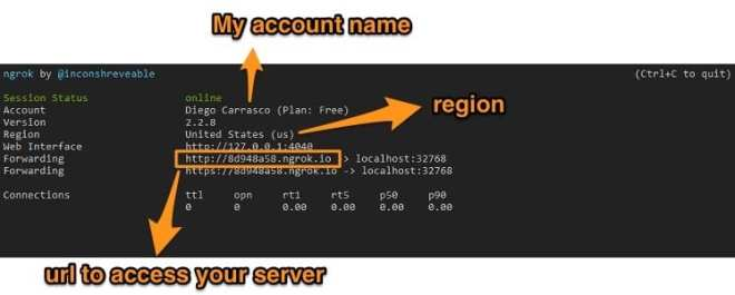 How to access Jupyter Notebooks in your local server with ngrok