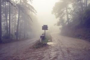 italy tuscany road fog misty 634155