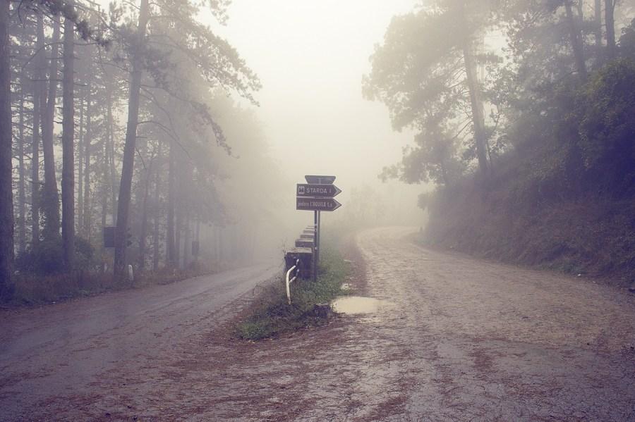 Italy Tuscany Road Fog Misty