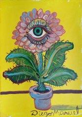 flor-ojo