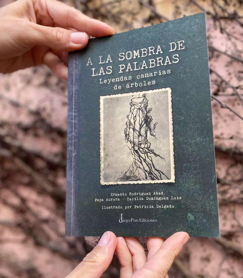 Libro A la sombra de las palabras