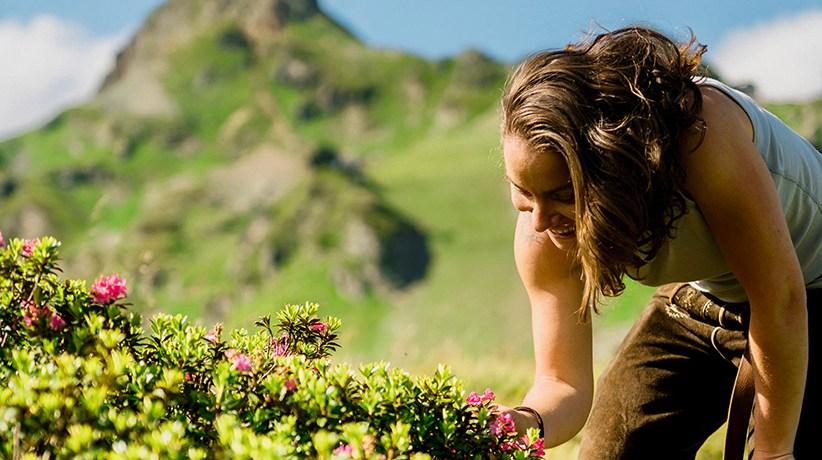 Tauernhex Michaela Veit lädt in Obertauern zu Kräuterwanderungen und Kochkursen. Hier gibt es die Infos, sowie die Tauernhex-Rezepte für Löwenzahn-Kapern und Gebackene Hollerblüten. Foto: Tauernhex