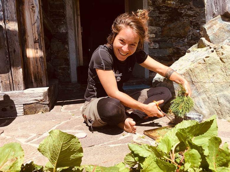 """""""Tauernhex"""" Michaela Veit, hier beim Zirbenschneiden für den selbst gemachten Zirbenlikör in Obertauern, bietet im Sommer Kochkurse und Kräuterwanderungen an. Foto: Tauernhex"""