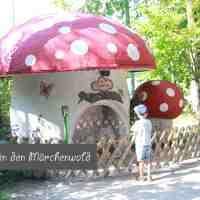 Heute gehen wir in den Wald - in den Märchenwald