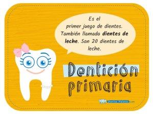 ¿Qué es la dentición primaria?