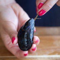 HOW TO CHECK, CLEAN & COOK MUSSELS