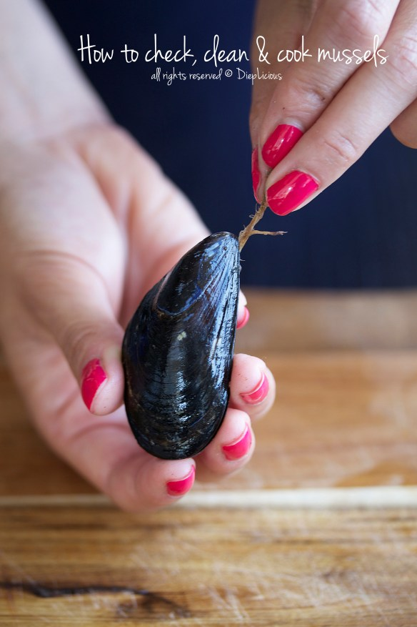 how to check-clean-cook-mussels