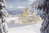 Humpie Horses. Fotos Hannes Langeder