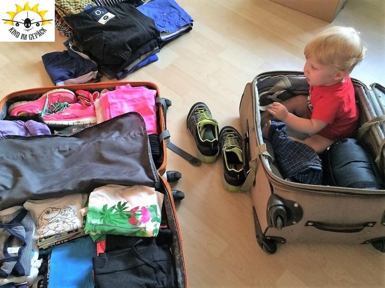 1blog-kindgepack