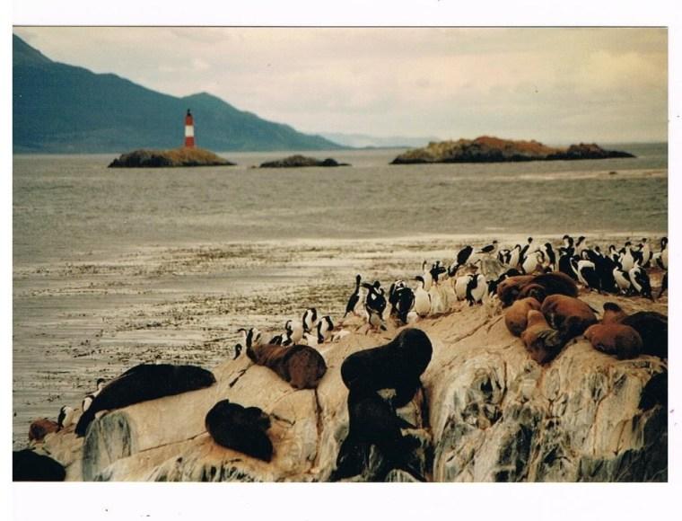 Argentinien 1995 (3)