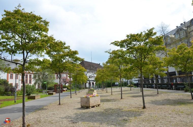 Mainz4-19- (136)