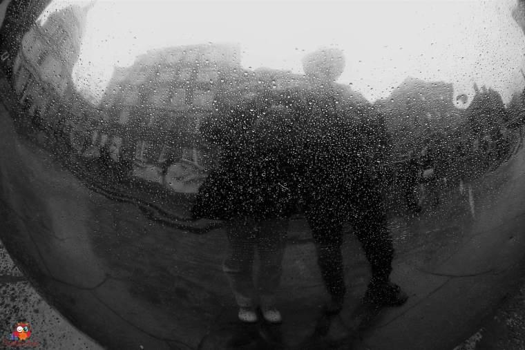 Hinter Glas (3)