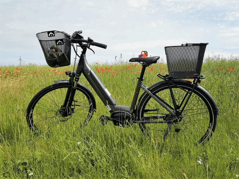 E-Bike Winora i9