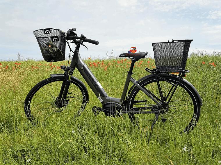 E-Bike Winora i9 (8)a-min