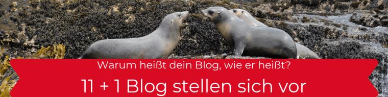 11 + 1 Blogs stellen sich vor