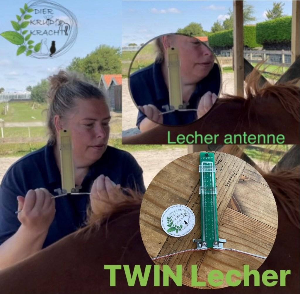 De Lecher Antenne (Radiësthesie)