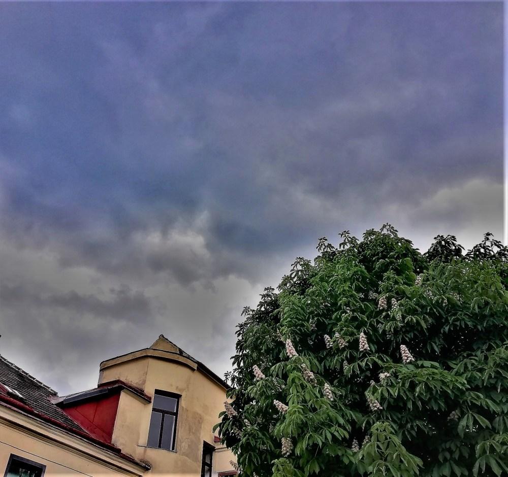 Regenwolken © Silvia Springer