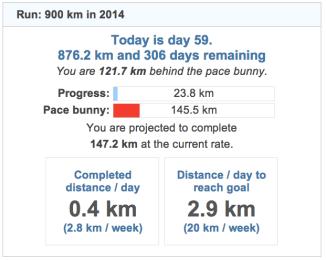 running goals 20140228