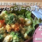 【ダイエットレシピ】ささみとブロッコリーの卵サラダ