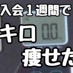 【カケハカの挑戦8】1週間の振り返りと今後の抱負【ダイエット、筋トレ】
