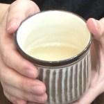 プチ断食におすすめ!簡単に食べれる玄米ライスミルクのご紹介 | 予防医療・予防美容で体質改善&デトックス 漢方 福岡健美工房