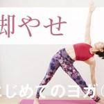 脚やせヨガ☆ 下半身を強化し、基礎代謝アップ! #216