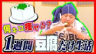 【激痩せ!?】100kg超えのデブに1週間豆腐だけ生活させたら何キロ痩せる?