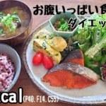 【ダイエット食事】紅鮭定食!  -6.5kg痩せた私の食生活 ~昼食編~ Diet vlog#6