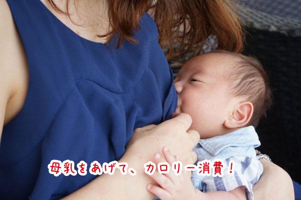 母乳をあげて、カロリー消費!