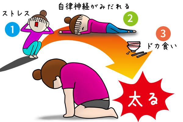 ストレス→自律神経がみだれる→ドカ食い→太る