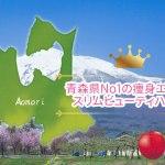 青森県No1の痩身エステはスリムビューティハウス!