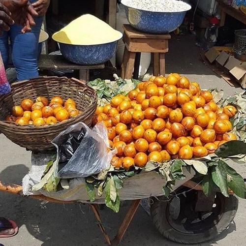 Lagos IMAGE 1- AGBALUMO