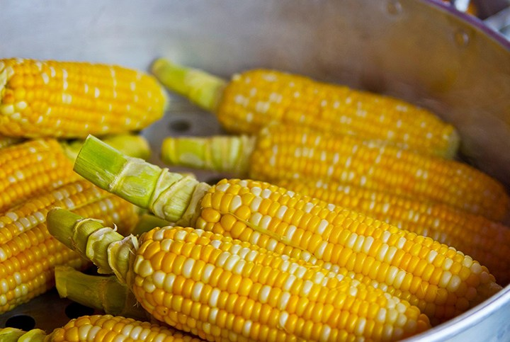 Corn: The Studies, Myths, Facts and Tips. Enjoy!