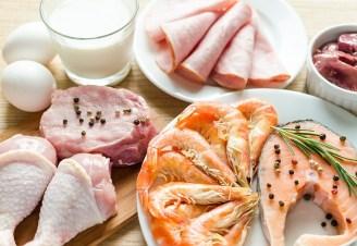 dietas con proteínas