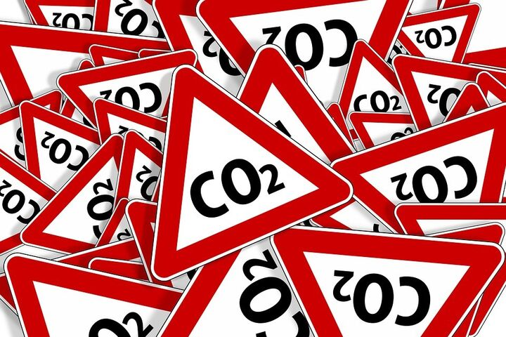 Dieta baja en emisiones de carbono