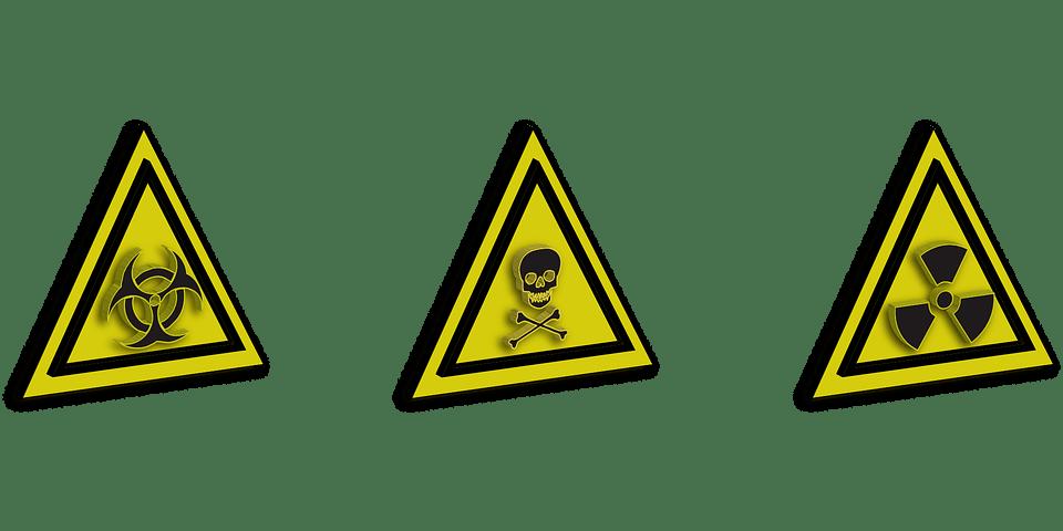 Lipotoxicidad