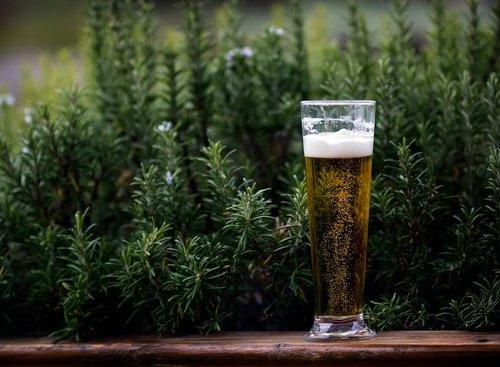 Bière - Cécilia Bourgeois