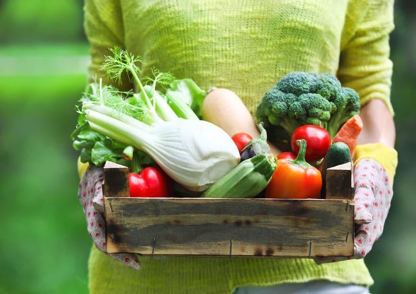 warzywa sezonowe na wiosnę