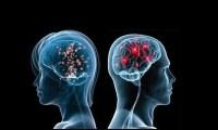 Alterations of sexual behavior – Human DES data
