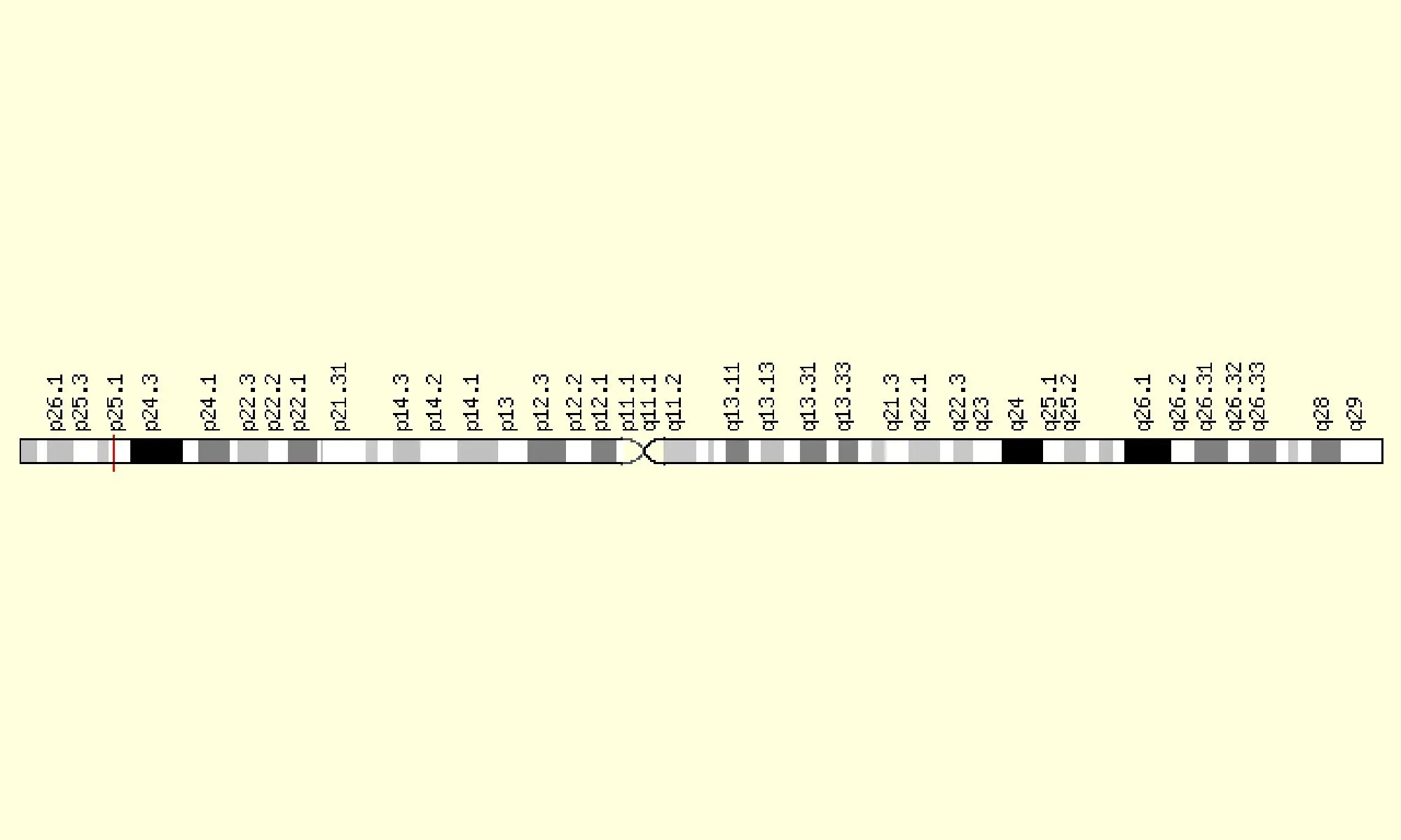 image of WNT7A Gene in genomic location