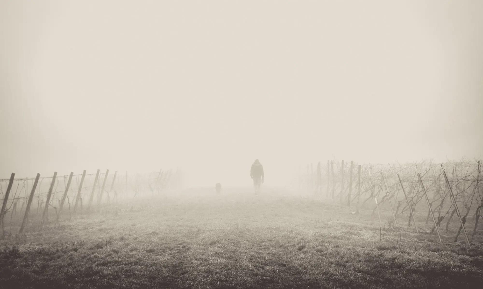 walking in fog image