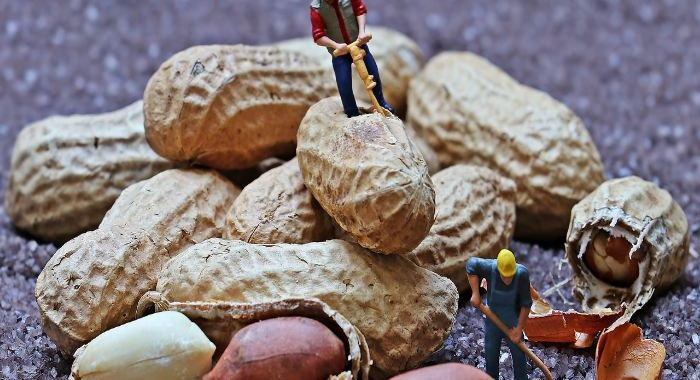 5 Cosas que debes de saber sobre la alergia al cacahuete si tienes un bebé