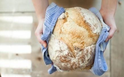 nueva ley del pan
