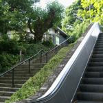 踏み台昇降運動ダイエットの効果・やり方は?高さや時間は?