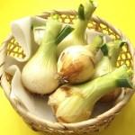 玉ねぎをダイエットに生かす方法と効果!痩せた口コミやレシピは?
