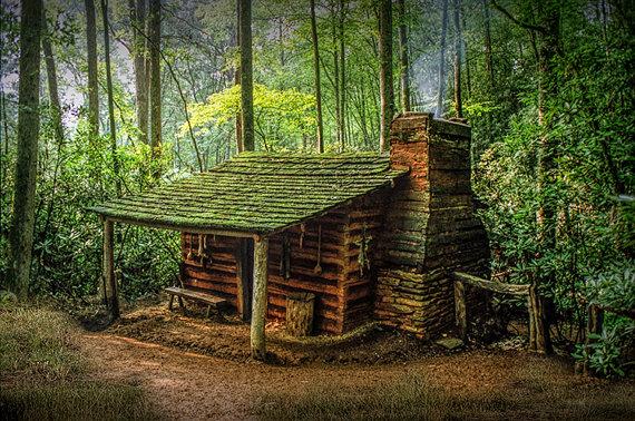 baita_nella_foresta