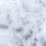 Klimaschutz: Kampf gegen die Eiszeit