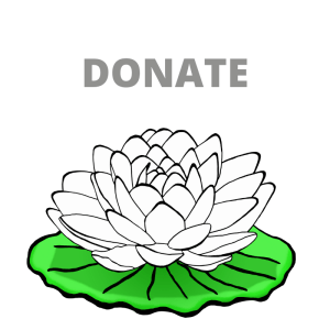 Donate to Dieu Nhung Tam An