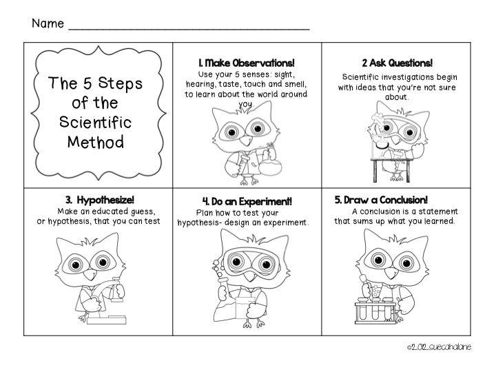 Preschool Science Worksheet For Kindergarten